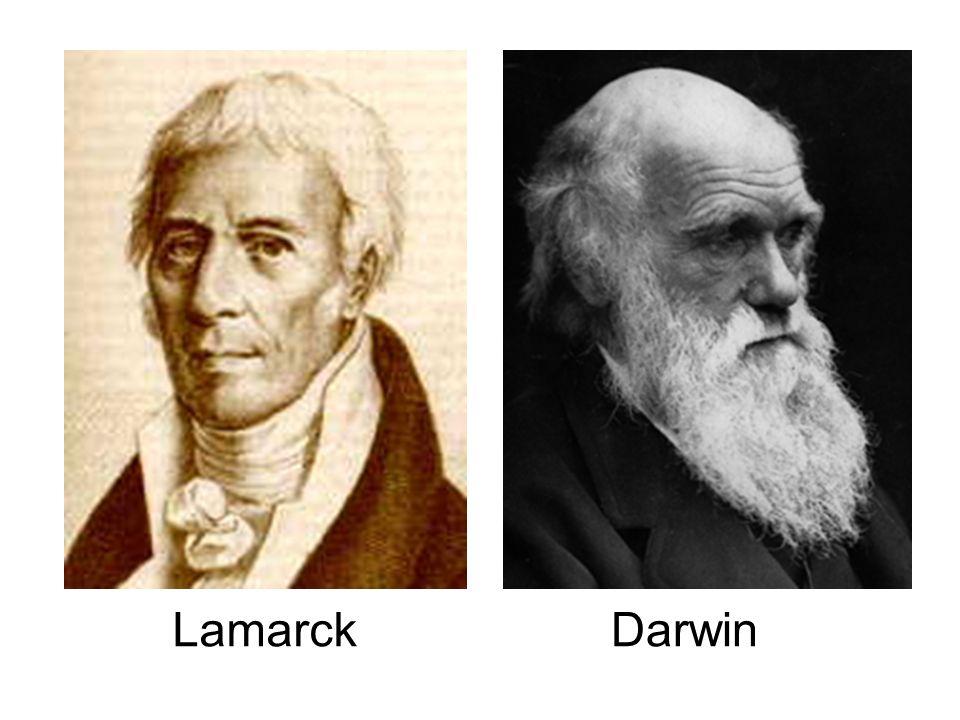 Lamarck Darwin