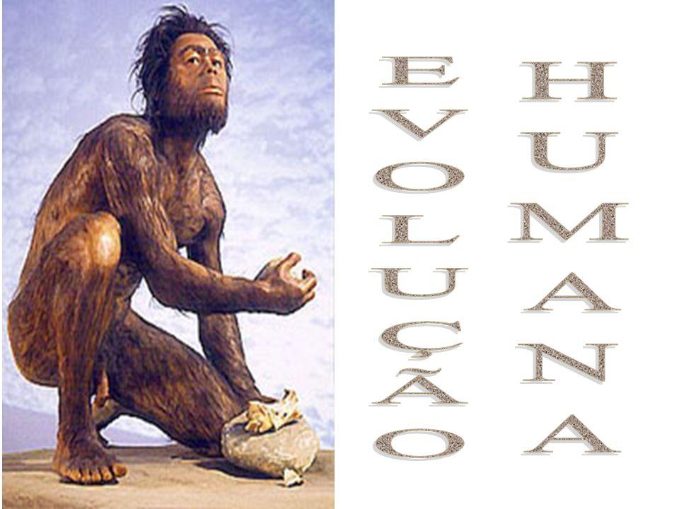 HUMANA EVOLUÇÃO