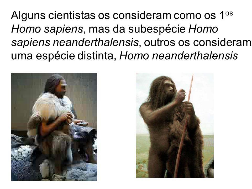 Alguns cientistas os consideram como os 1os