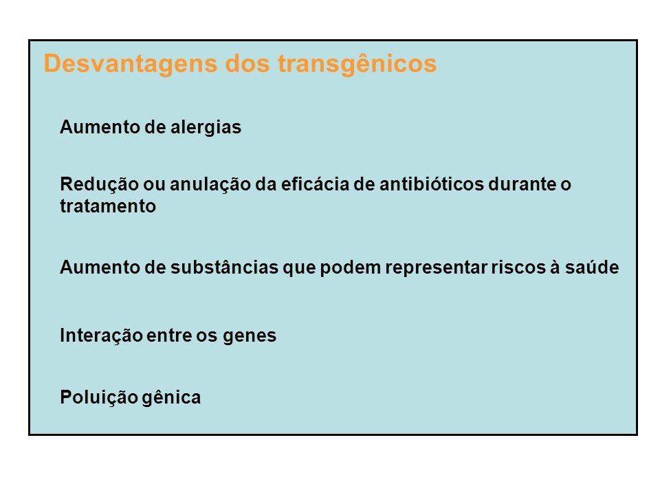 Desvantagens dos transgênicos