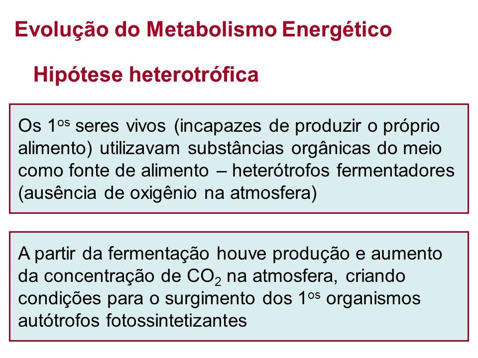 Evolução do Metabolismo Energético
