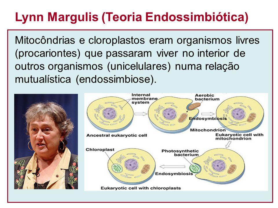 Lynn Margulis (Teoria Endossimbiótica)