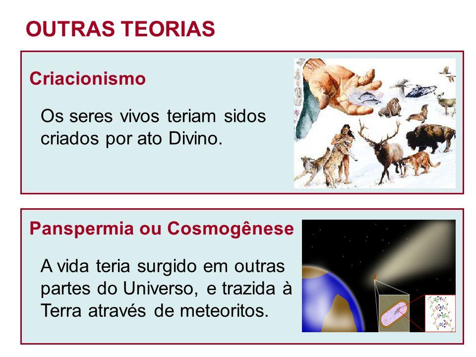 OUTRAS TEORIAS Criacionismo Os seres vivos teriam sidos