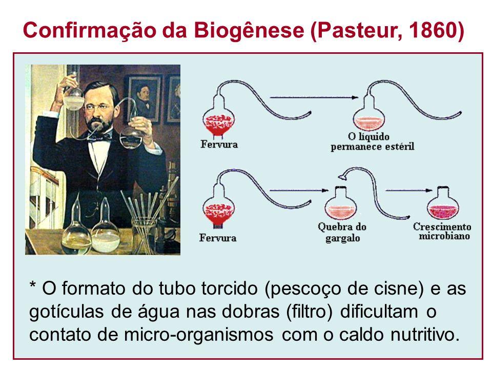 Confirmação da Biogênese (Pasteur, 1860)