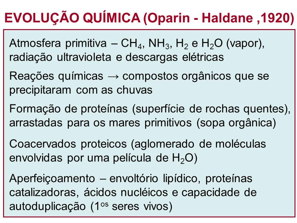 EVOLUÇÃO QUÍMICA (Oparin - Haldane ,1920)