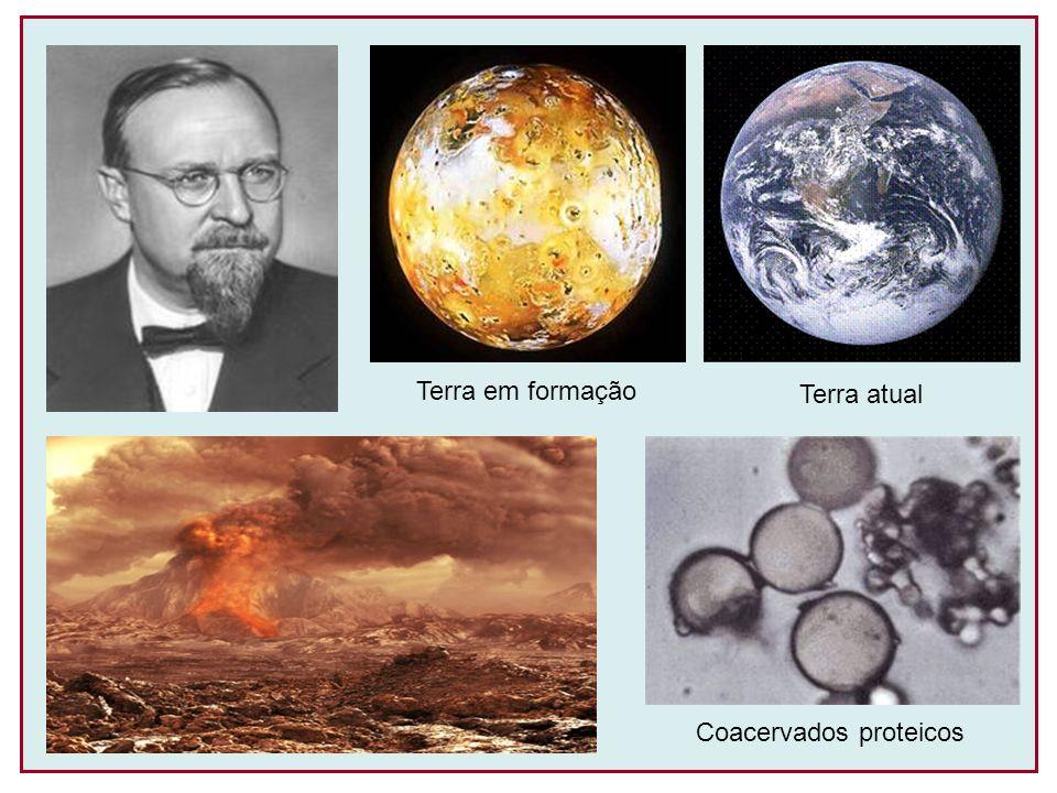 Terra em formação Terra atual Coacervados proteicos