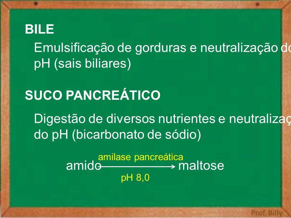 Emulsificação de gorduras e neutralização do pH (sais biliares)