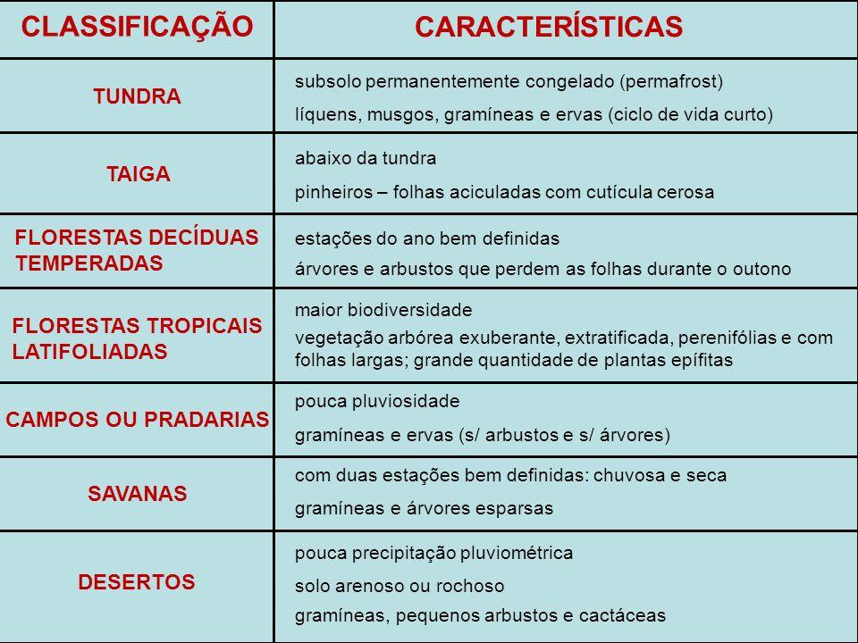 CLASSIFICAÇÃO CARACTERÍSTICAS TUNDRA TAIGA FLORESTAS DECÍDUAS