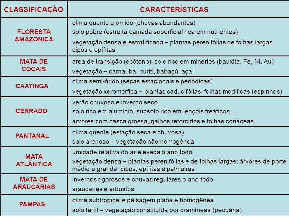 CLASSIFICAÇÃO CARACTERÍSTICAS FLORESTA AMAZÔNICA