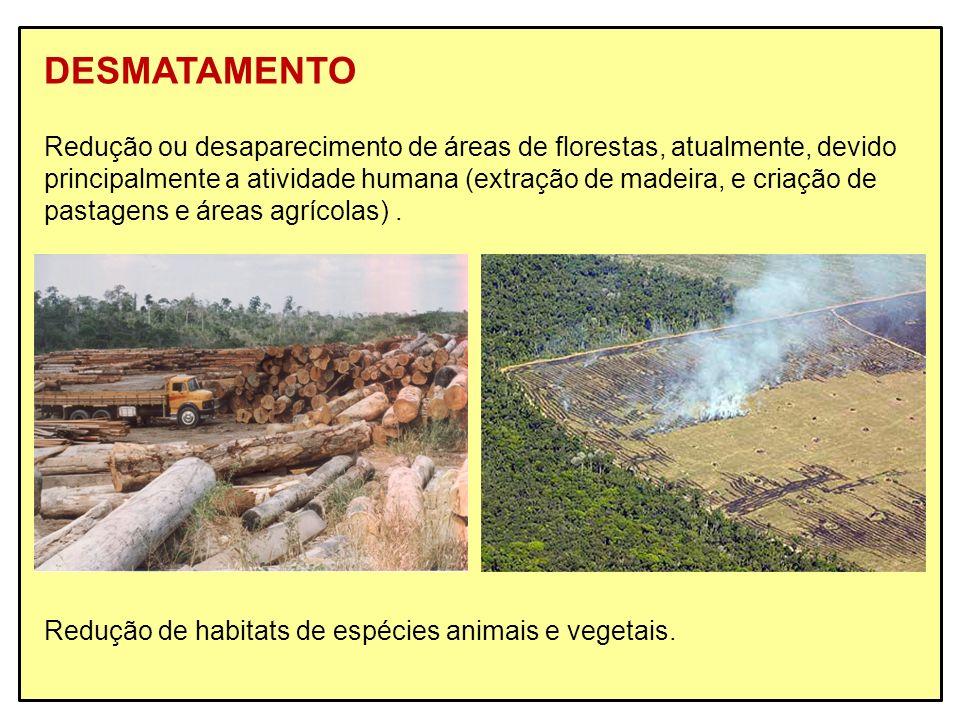DESMATAMENTO Redução ou desaparecimento de áreas de florestas, atualmente, devido.
