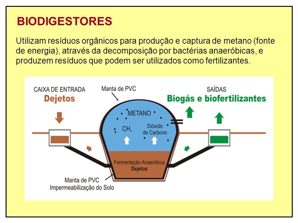 BIODIGESTORES Utilizam resíduos orgânicos para produção e captura de metano (fonte.