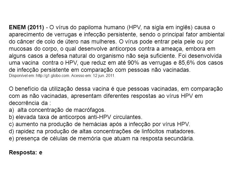 a) alta concentração de macrófagos.