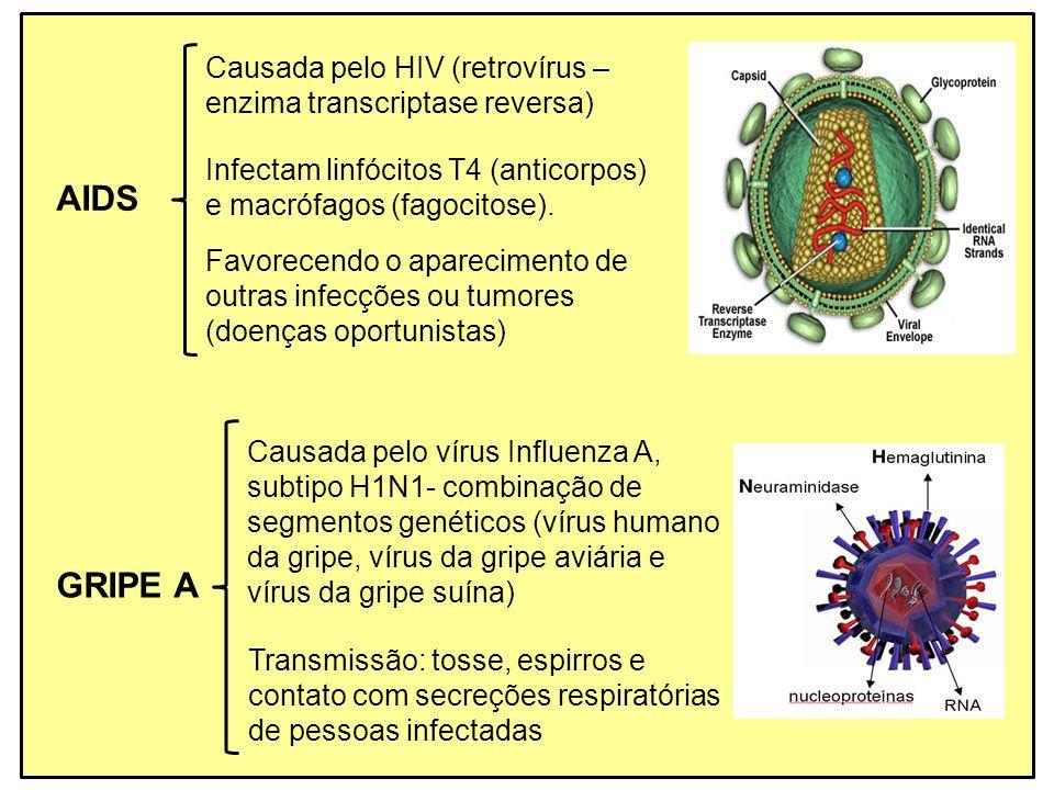 AIDS GRIPE A Causada pelo HIV (retrovírus –