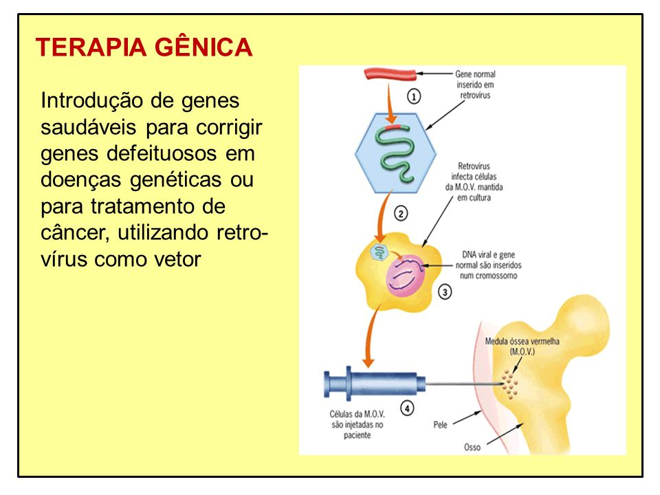 TERAPIA GÊNICA Introdução de genes saudáveis para corrigir