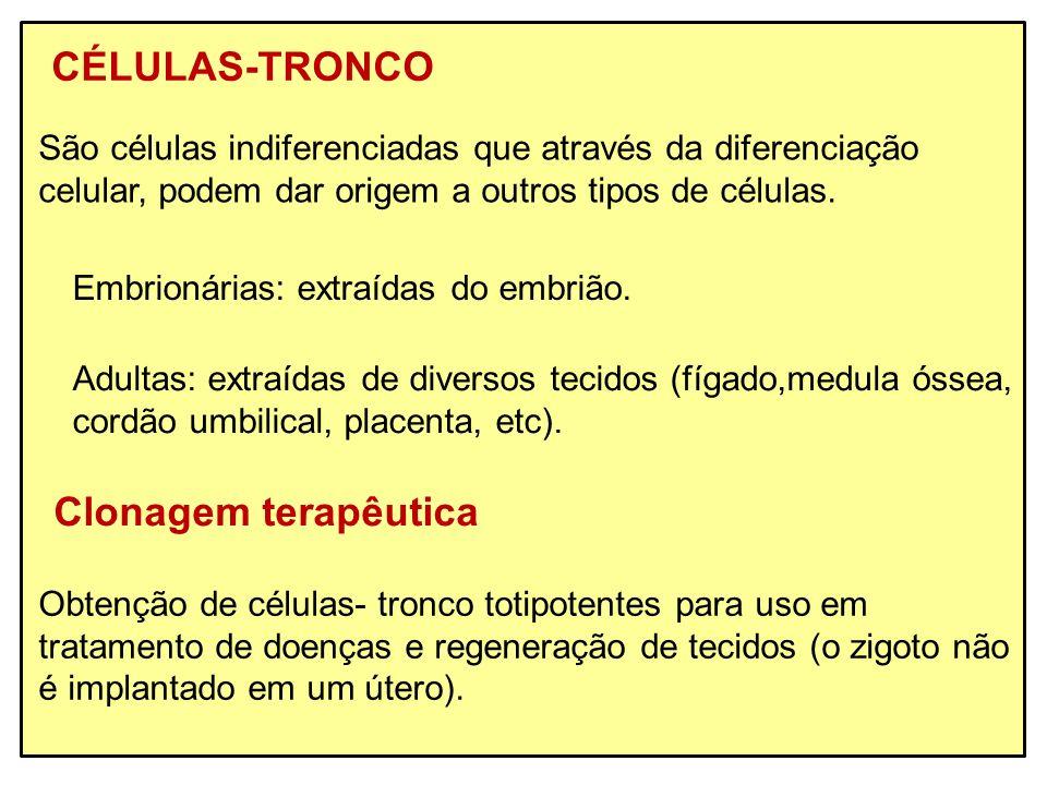 CÉLULAS-TRONCO Clonagem terapêutica
