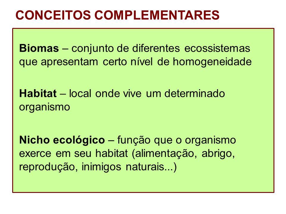 CONCEITOS COMPLEMENTARES