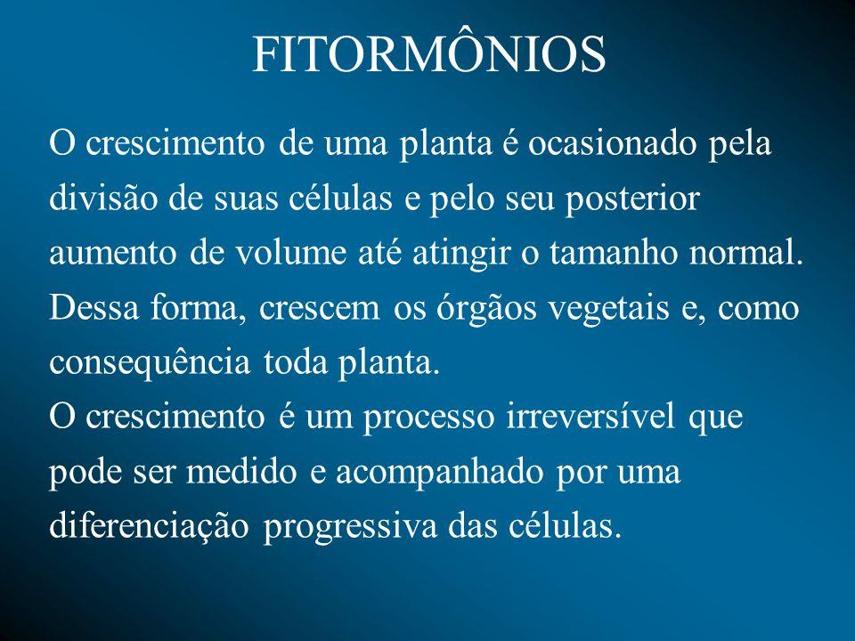 FITORMÔNIOS