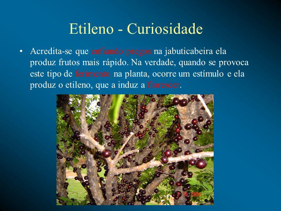 Etileno - Curiosidade