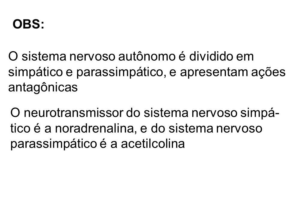 OBS: O sistema nervoso autônomo é dividido em. simpático e parassimpático, e apresentam ações. antagônicas.