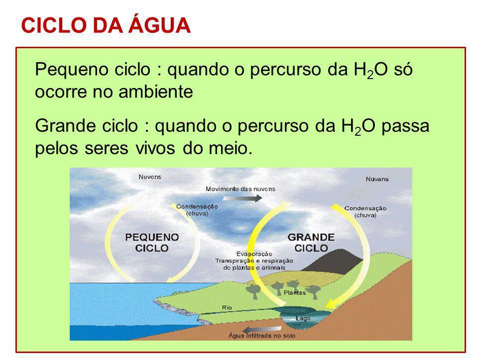 CICLO DA ÁGUA Pequeno ciclo : quando o percurso da H2O só