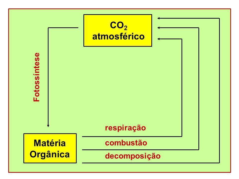 CO2 atmosférico Matéria Orgânica