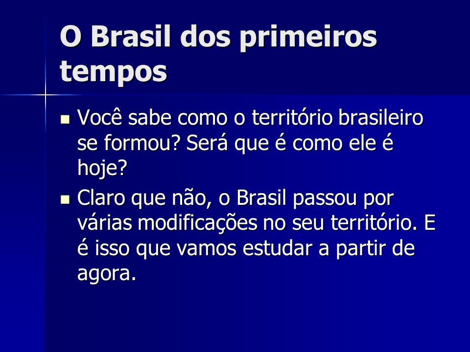 O Brasil dos primeiros tempos