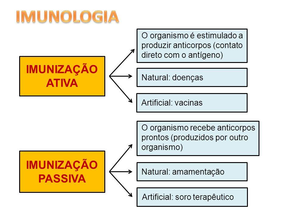 IMUNOLOGIA IMUNIZAÇÃO ATIVA IMUNIZAÇÃO PASSIVA