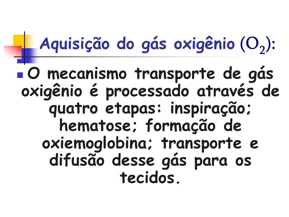 Aquisição do gás oxigênio (O2):