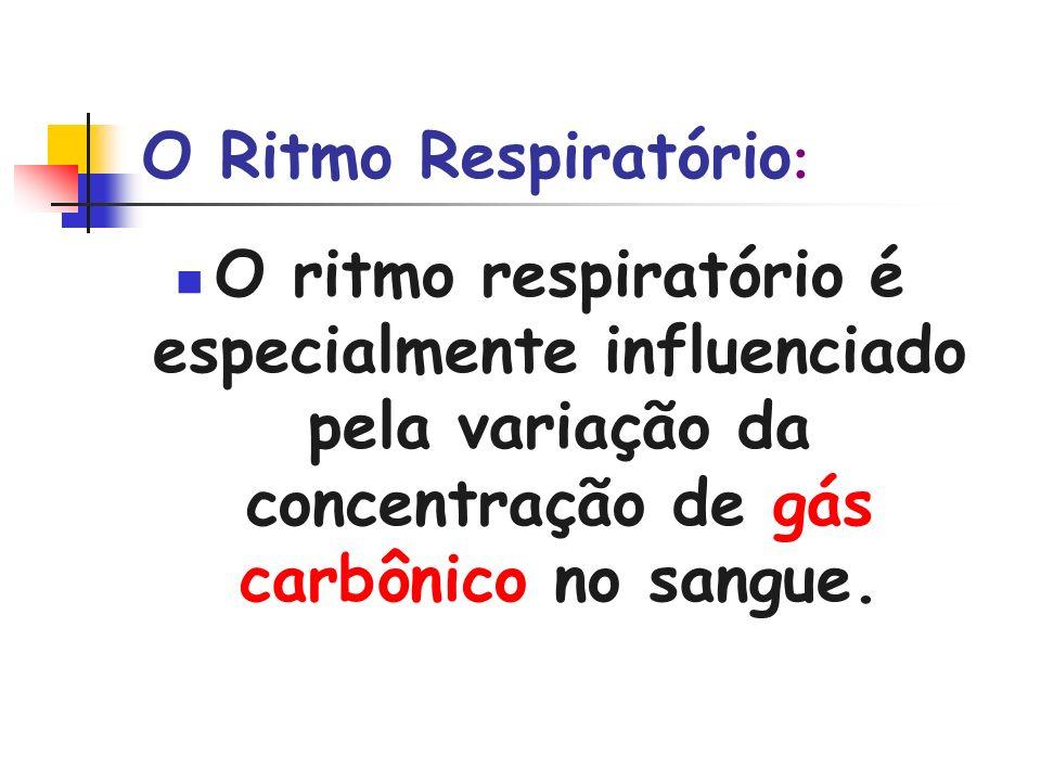 O Ritmo Respiratório:O ritmo respiratório é especialmente influenciado pela variação da concentração de gás carbônico no sangue.