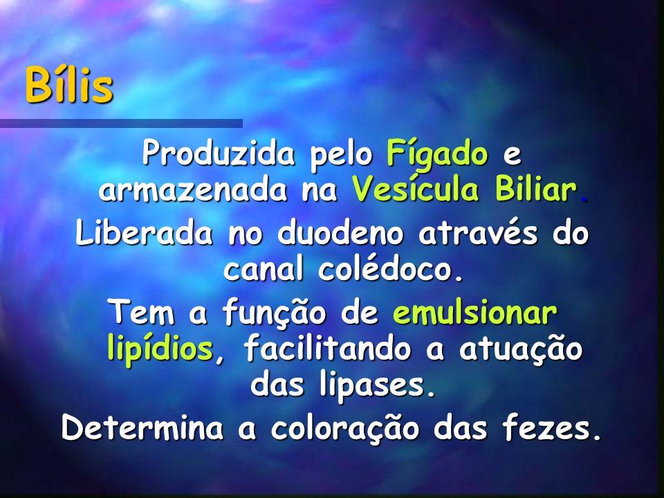 Bílis Produzida pelo Fígado e armazenada na Vesícula Biliar.