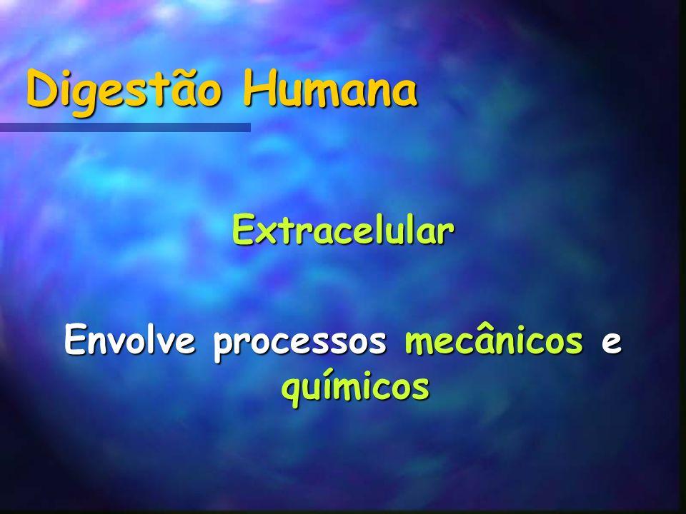 Envolve processos mecânicos e químicos
