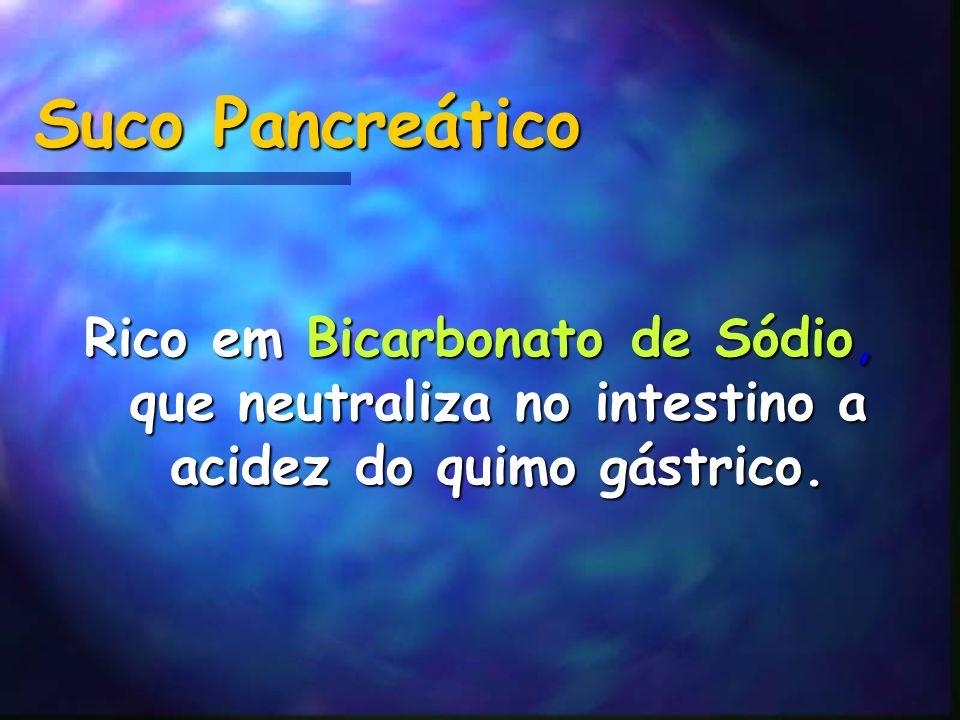 Suco Pancreático Rico em Bicarbonato de Sódio, que neutraliza no intestino a acidez do quimo gástrico.