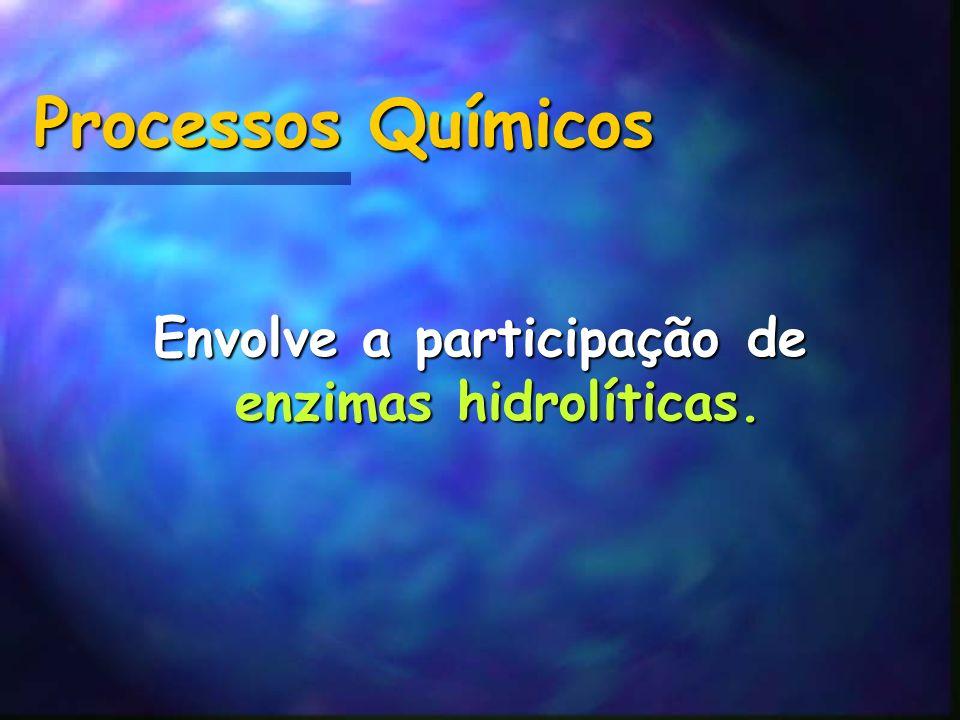 Envolve a participação de enzimas hidrolíticas.