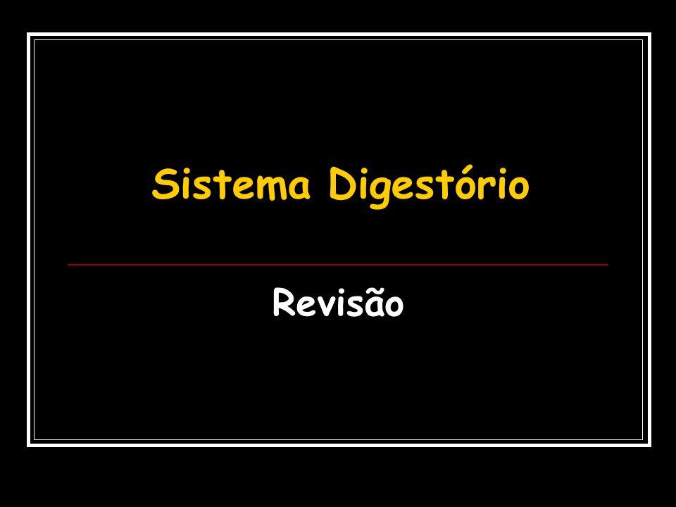 Sistema Digestório Revisão