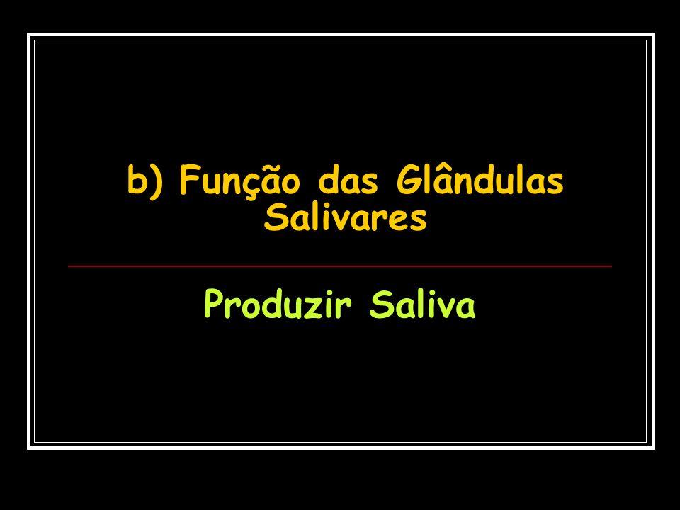 b) Função das Glândulas Salivares