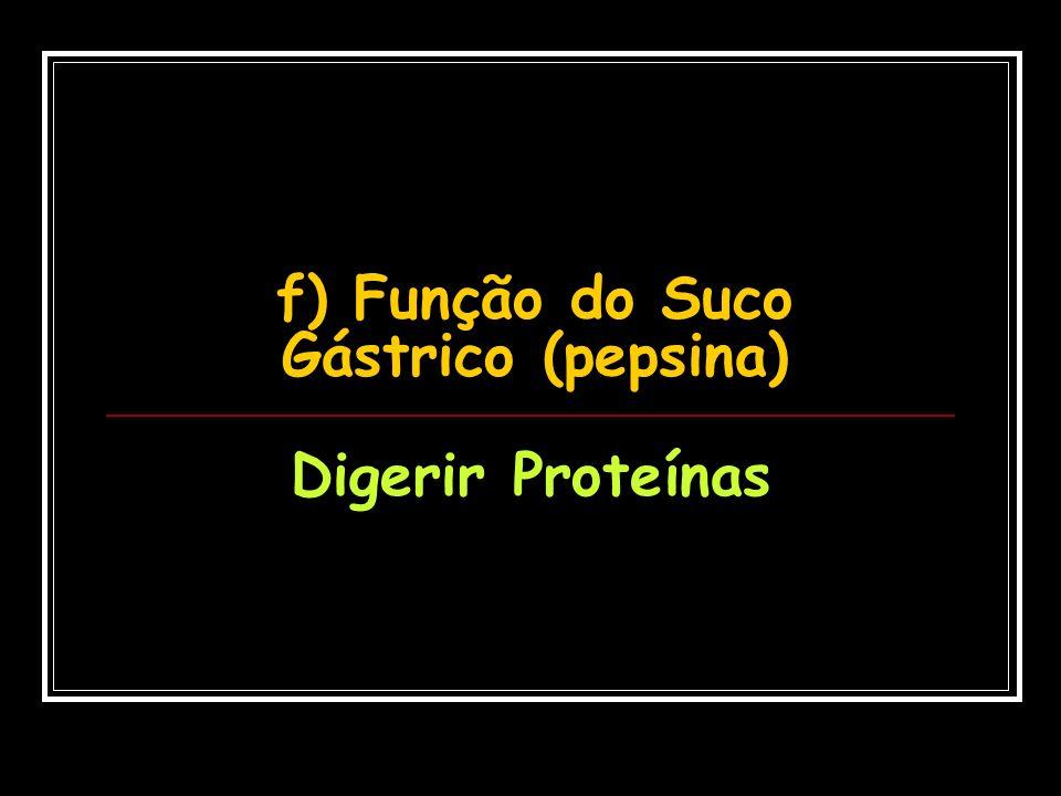 f) Função do Suco Gástrico (pepsina)