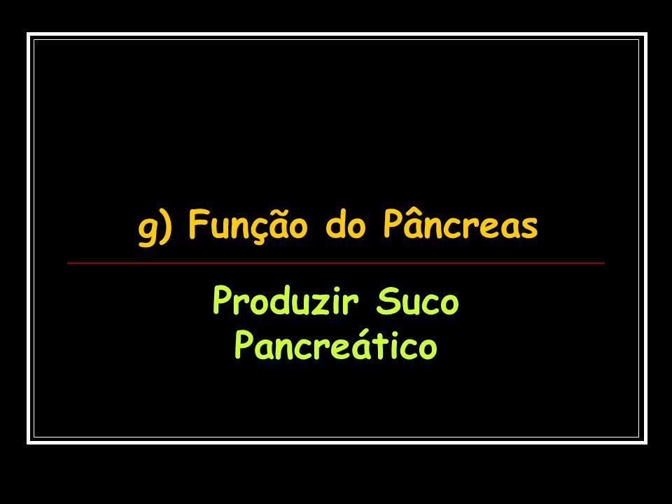 Produzir Suco Pancreático