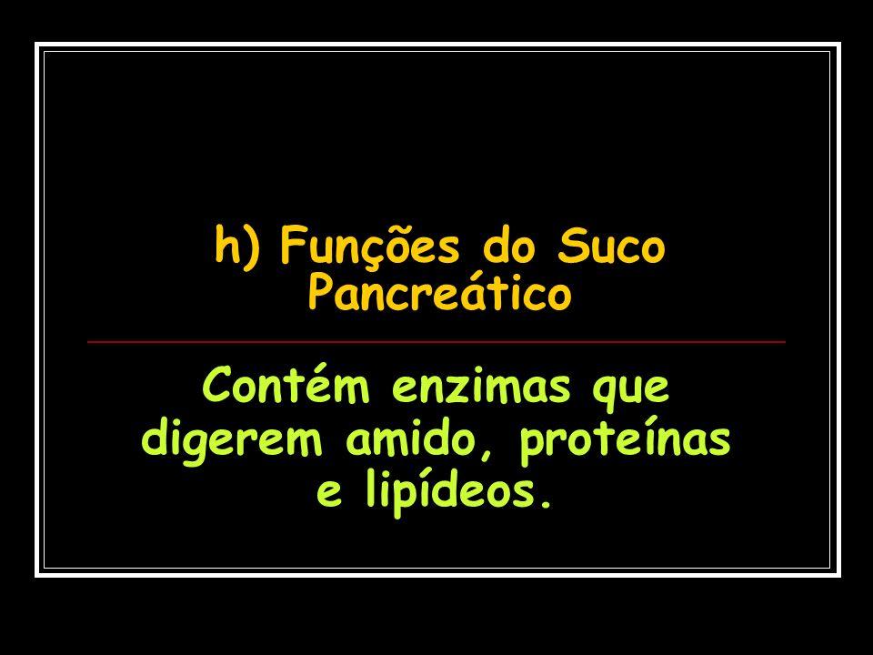 h) Funções do Suco Pancreático