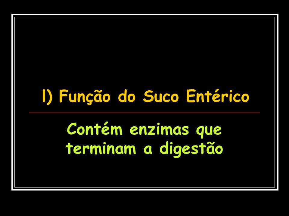 l) Função do Suco Entérico