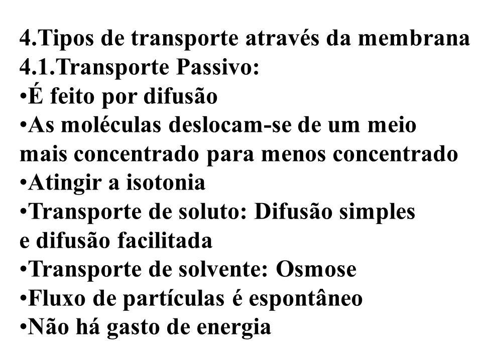 4.Tipos de transporte através da membrana