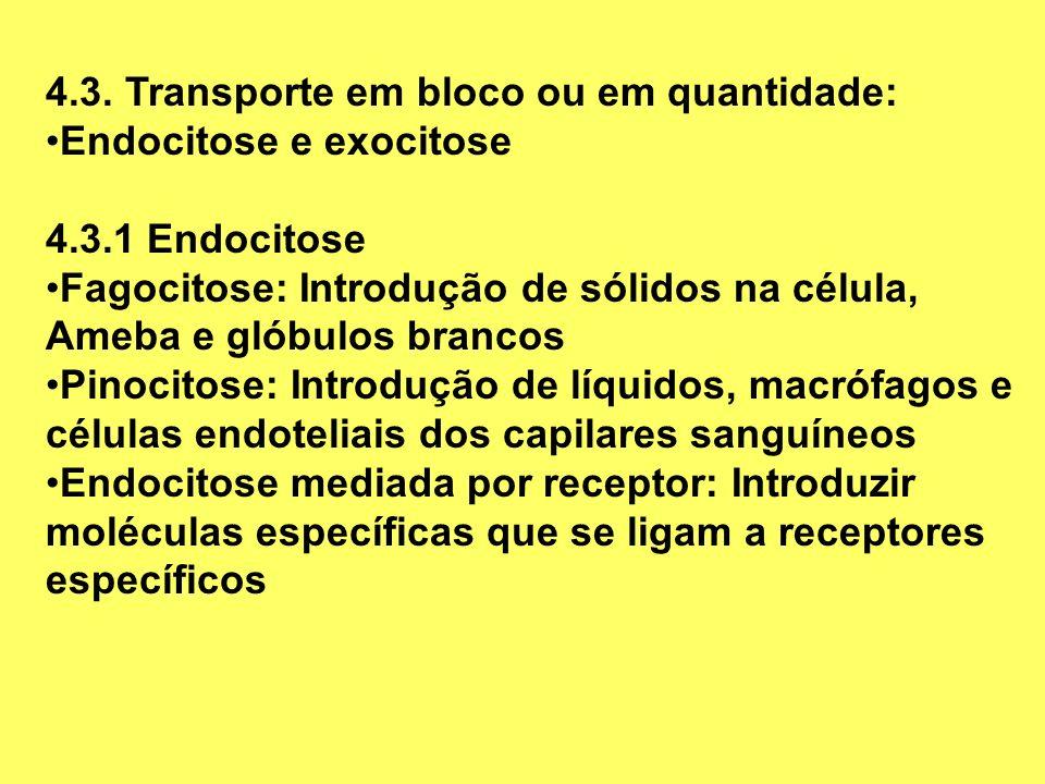 4.3. Transporte em bloco ou em quantidade:
