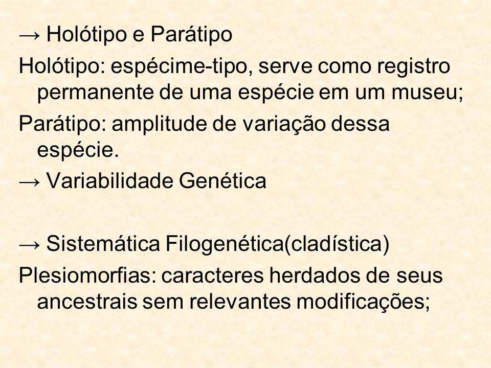 → Holótipo e Parátipo Holótipo: espécime-tipo, serve como registro permanente de uma espécie em um museu;
