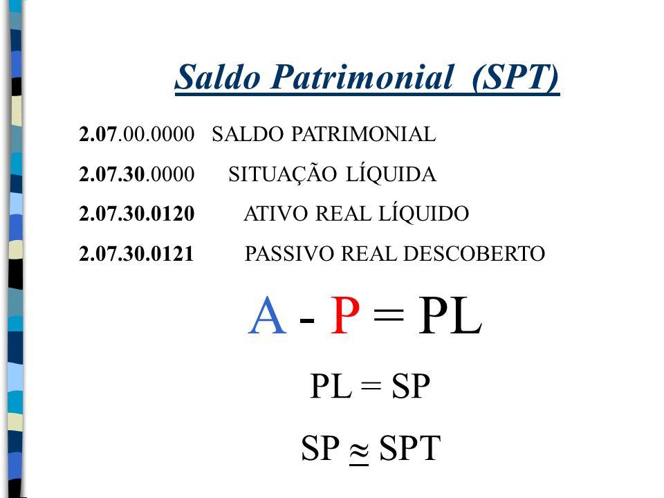 Saldo Patrimonial (SPT)