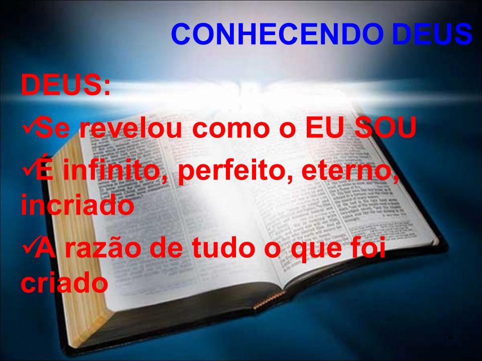 CONHECENDO DEUS DEUS: Se revelou como o EU SOU. É infinito, perfeito, eterno, incriado.