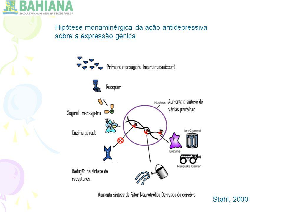 Hipótese monaminérgica da ação antidepressiva