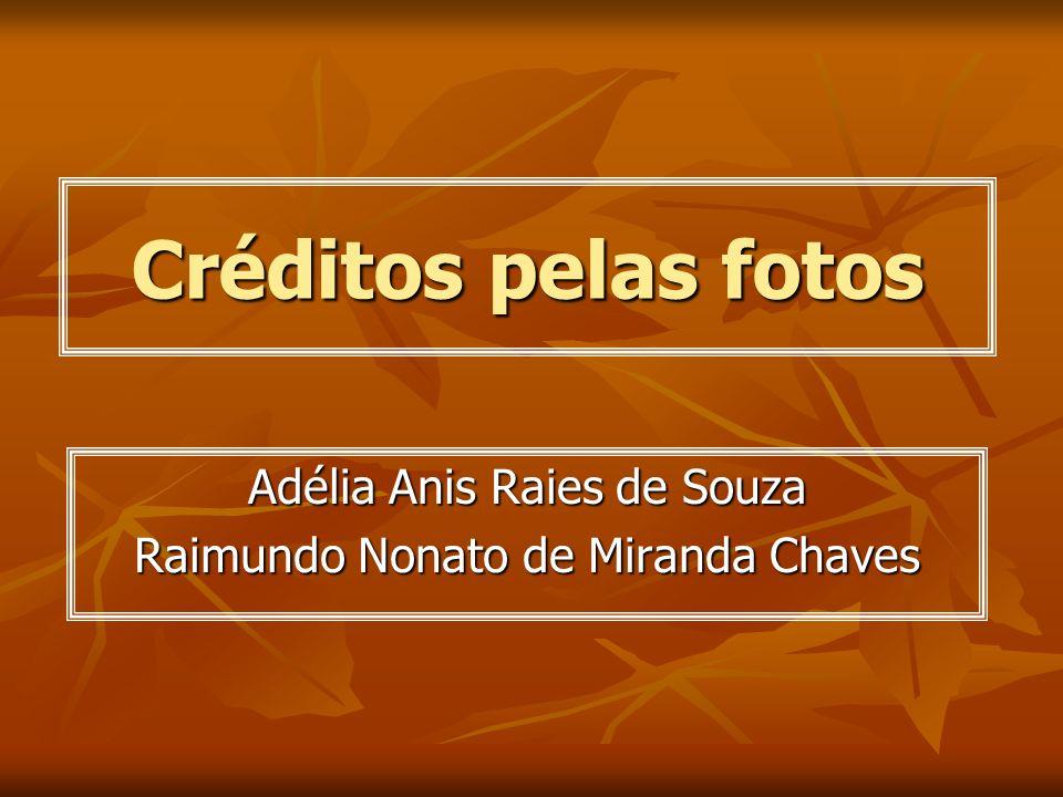 Adélia Anis Raies de Souza Raimundo Nonato de Miranda Chaves
