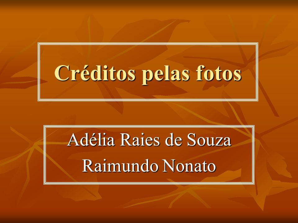 Adélia Raies de Souza Raimundo Nonato