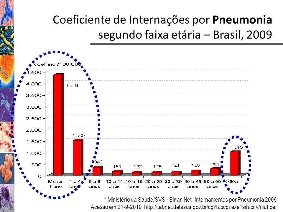 Coeficiente de Internações por Pneumonia segundo faixa etária – Brasil, 2009
