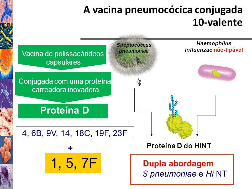 A vacina pneumocócica conjugada 10-valente