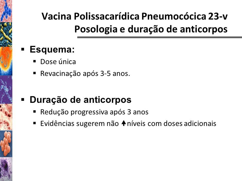 Vacina Polissacarídica Pneumocócica 23-v Posologia e duração de anticorpos